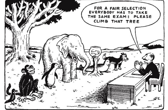 Friday Funny – Standardised Testing