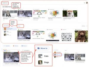Create a collection of images in Chrome_5